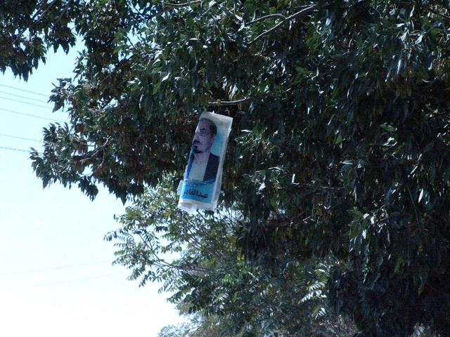 Ulotka wyborcza na jednym z drzew w centrum Ghazni/fot. Marcin Ogdowski