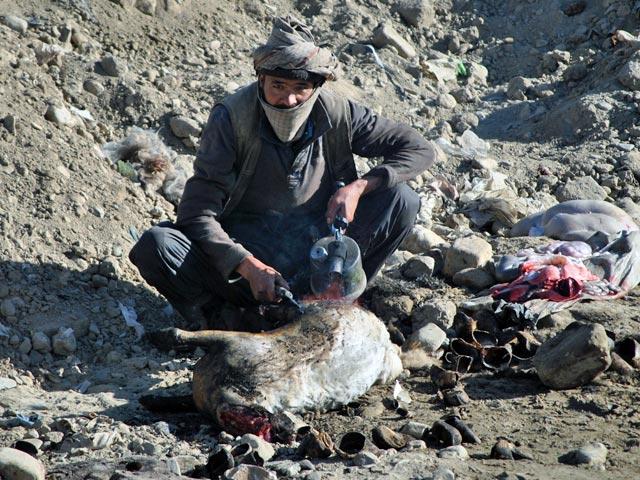 Jak widać, jedzenie można przygotować wszędzie (w tym przypadku w wyschniętym korycie rzeki płynącej przez Ghazni, pełniącej rolę wysypiska). I z byle czego.../fot. Marcin Ogdowski