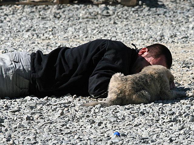 Adżi, nawet w ten sposób przekonywany, nie chciał opuścić placu, z którego strzelały Dany... :)/fot. Artur Weber, PIO Afganistan