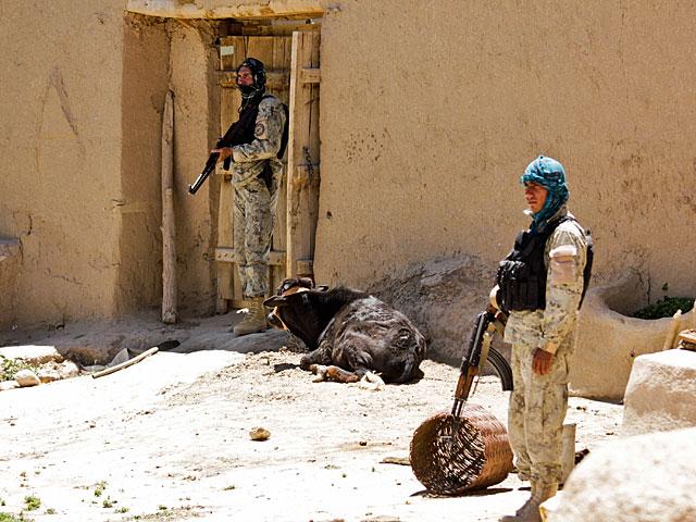 """Bo właśnie - gros działań podczas """"Tygrysa"""" wzięli na siebie sami Afgańczycy/fot. Katarzyna Szal"""